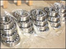 chili-grinder-bearing