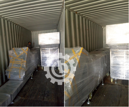 Onion Processing Equipment Delivered to Poland and Korea